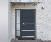New models of entry doors